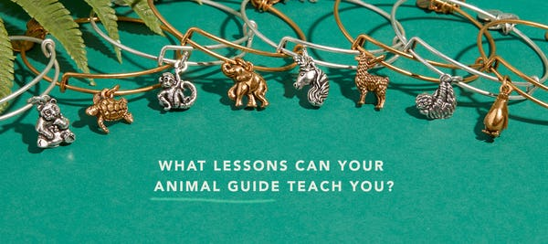 Discovering and Connecting with Your Animal Guide