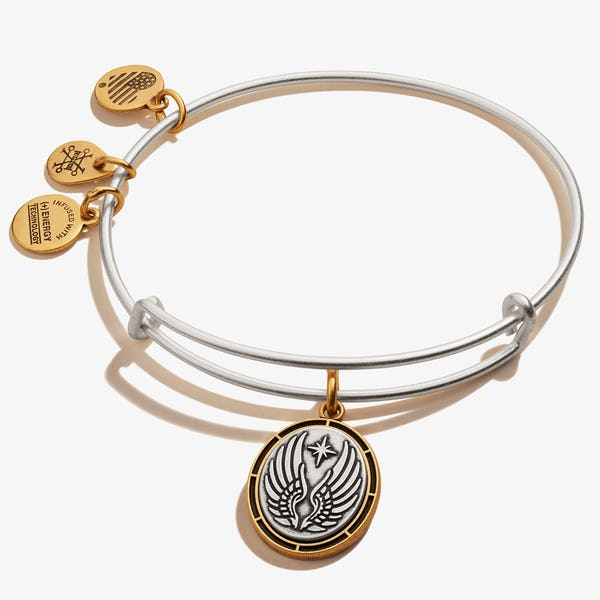 Guardian Angel Symbol Charm Bangle, Rafaelian Silver, Alex and Ani