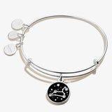 Leo Zodiac Charm Bangle, Shiny Silver, Alex and Ani