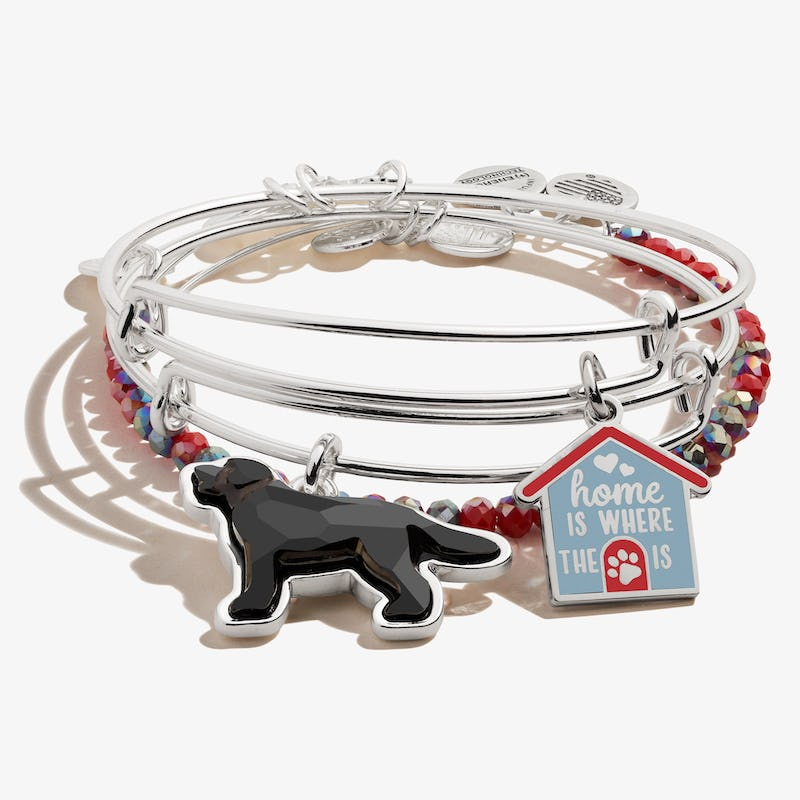 'Home is Where the Paw is' Doghouse Charm Bangles, Set of 3