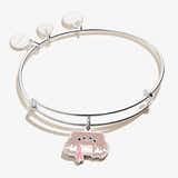 Harry Potter Monster Book of Monsters Charm Bangle, Shiny Silver, Alex and Ani