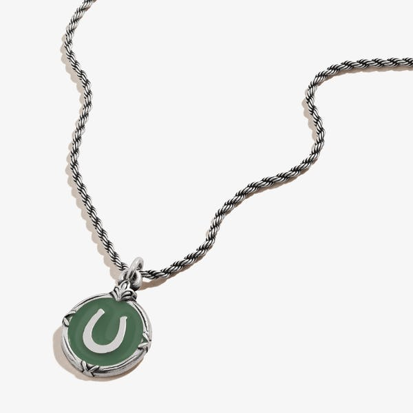 Token of Luck Horseshoe Charm Necklace